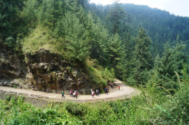 Hiking in Thanedar Himachal