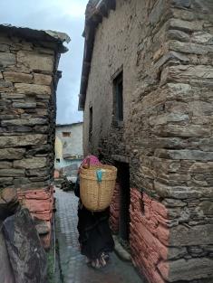 Mana Village