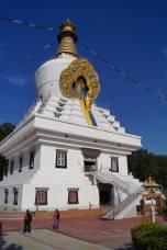 Mindrolling in Dehradun