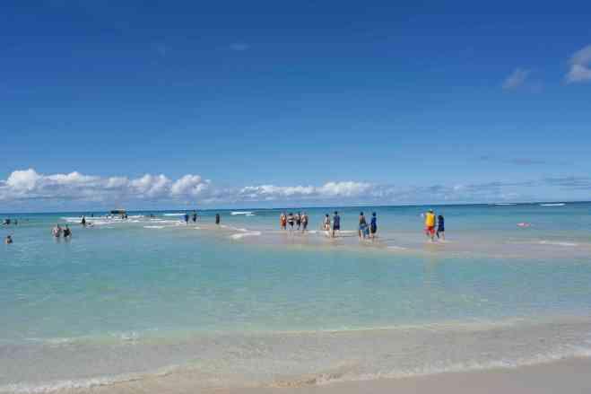 Sandbar at Waikiki beach