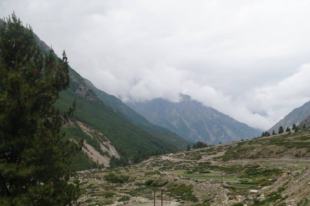 Views while trekking in Sangla