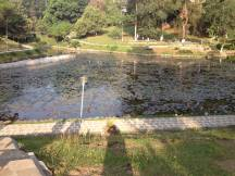 Shillong Botanical Garden