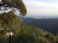 View of the Himalayas from Kasauli