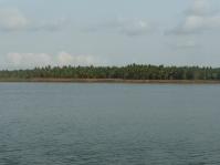River Godavari