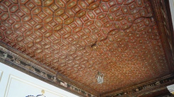 Junagarh Fort Ceiling Close up