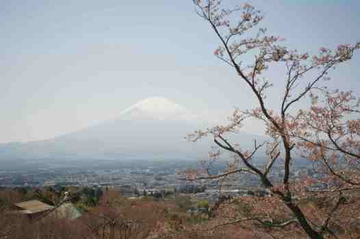 Mt Fuji - view of Mt. Fujisan from the Peace Park