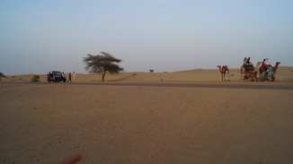 Sam Sand Dune take your pick jeep or camel