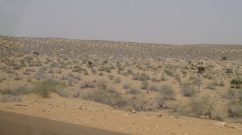 Thar on the way to Tanot