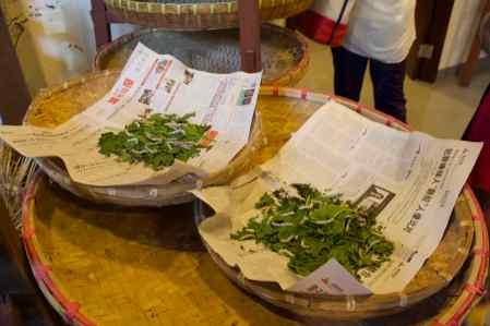 Feasting Silk Worms Shanghai