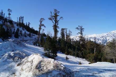 Area on the way to Rohtang where you can play in the snow