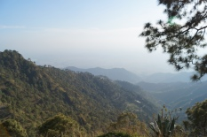 View of Kasauli Mountains