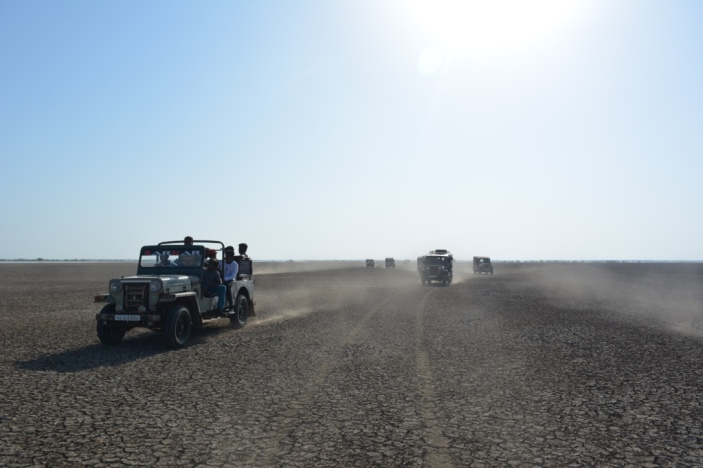 Jeeps on the Safari