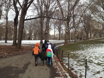 Walking in central park