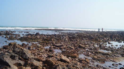 rocky side of rushikonda beach