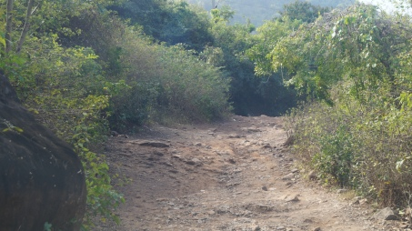 the road taken by the jeep to the start of katika waterfalls trail