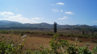 Araku Views