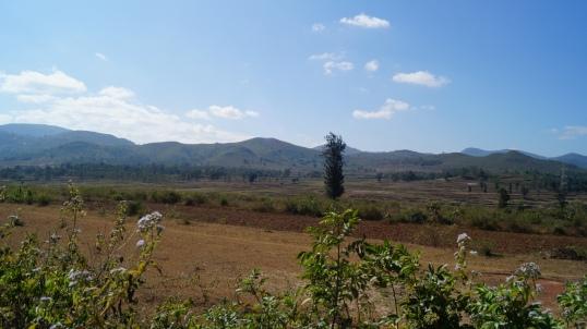 Araku Views