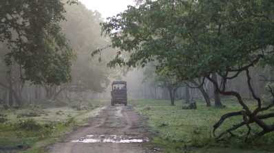 Early morning jungle safari at Zone A Nagarahole Kabini