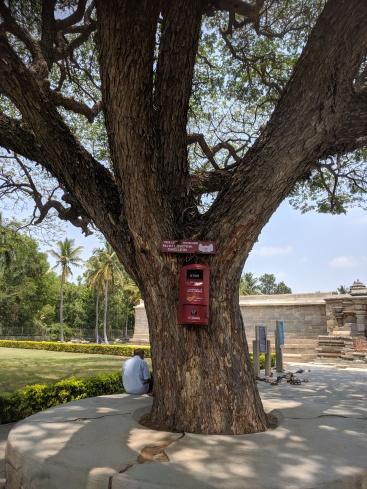 Postbox at Somanathpur
