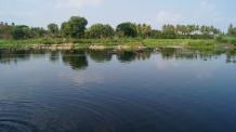 River Kaveri at Srirangapatna view
