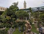 The Bonsai Garden at Avadoota Ashram